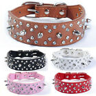 Brown Leather Dog Collar Bling Rhinestone Crystal Spiked Studs Dog Collar S M L