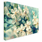 Cherry Blossoms Teal Canvas Wall Art Print Large + Any Size