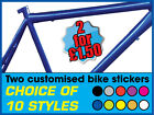 ' TWO CUSTOM / PERSONALISED VINYL BIKE STICKERS' Choice of 10 styles & colours