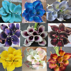 36 Real Touch Latex Calla Lily Wedding Bridal Bouquets Home Party Decor Flowers