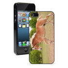 For Apple iPhone 4 4S 5 5S 5c 6/6 Plus Hard Case Cover 1239 Draft Horse Gallop