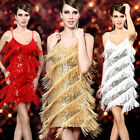 Hot Sexy Lady Flapper Cocktail Party Latin Ballroom Dance Sequin Fringe Dress