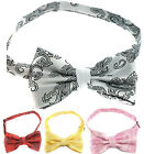 PAISLEY PATTERN MENS BOWTIE NOVELTY WEDDING GROOM TUXEDO BOW TIE NECKTIE