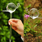 Glass Self Watering Device Automatic Garden Sprinklers Waterer for Houseplant