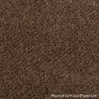 5 Metre Wide Carpet, Brown Carpet, Hardwearing Stain Resistant Berber Loop