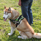 NEW Nylon Service Dog Harness Padded Removable label Patches 4 Sizes dog Vests