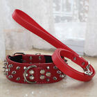 2 inches Wide Spiked Studded Leather Pet Dog Collar 48inch Length Leash lead Set