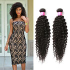 Fashion Black Curly Wave 2BundlesMalaysian Human Hair Extension Women Hair Wefts