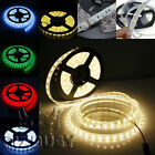 5M 300 LED Strip Light 5050 SMD/RGB Tape Roll IP65/27 12V Home Car Decoration