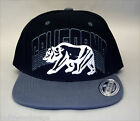 California Bear Cap- 4482