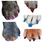 40 Pcs Soft Nail Caps for Dogs Cats Pet Claws Paws Control 10 Colors XS S M