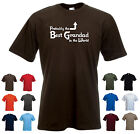 'Probably the Best Grandad in the World' Funny Grandfather Birthday Mens T-shirt