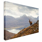 Stag on Watch Canvas wall Art prints high quality great value