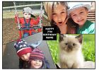 SMASHED PERSONALISED 4 PHOTO COLLAGE A4 EDIBLE CAKE TOPPER CUSTOM MADE PICTURE