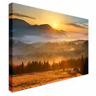 Sunrise over Forest Canvas wall Art prints high quality great value