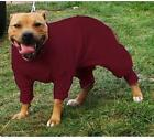 Staffordshire Bull Terrier (Staffie) - Dog coat Pyjamas