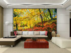 Nature Conservation Autumn Full Wall Mural Photo Wallpaper Print Home 3D Decal