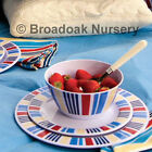 Nautical Marina Melamine Dinner Set - Everyday, Picnic, Camping, Party, BBQ,