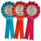 10 x Well Done Rosettes, Dog Show Well Done Rosettes, Pony Party Rosettes - F1
