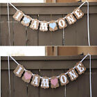 I AM ONE Bunting Garland Banner Baby Girl or Boy First Birthday Party Decoration