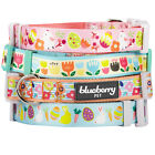 Blueberry Pet Easter Multiple Designs Dog Collar in Spring Pastel Colors