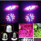 2/4/6/8/10PCS E14 LED Grow Light Growing Lamp Bulb for Flower Seed Plant Indoor