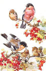 Bull Finches & Berries Crazy Quilt Block Multi Sizes FrEE ShiPPinG WoRld WiDE