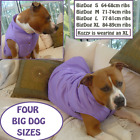 LARGE DOG COAT BIG DOG WARM JACKET WINTER COAT BULLDOG PITBULL STAFFY ROTTY etc