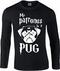 My Patronus Is A Pug Longsleeve T-Shirt, Harry Potter wizard, Gift Top