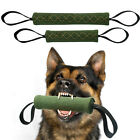 Bite Tug for Small Large Dogs Pet Chewing Toys for Training Schutzhund K9 Green
