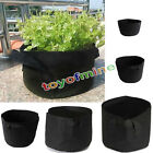 10 Pack Fabric Grow Pots Breathable Plant Bags 1,2,3,5,7,10 Gallon Smart bags