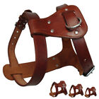 Thick Genuine Leather Pet Dog Harness for Dogs Small Medium Large Brown