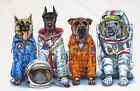 SPACE DOGS--NASA Astronaut Flight Suits Astronomy Science 2 sided T shirt S-3XL+ image