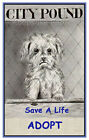 Save A Life Adopt A Pet Quilt Block Multi Szs FrEE ShiP WoRld WiDE FrEE ShiPPinG