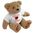 Personalised Happy Christmas Teddy Bear - Gift with Optional Red Gift Bag Xmas