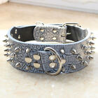 "2"" Leather Dog Collar Spiked Studded Collar spiks studs Pitbull Terrier Boxer"