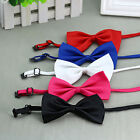 bow dog collar - Solid Color Adjustable Cat Bowtie Pet Dog Collar Bowknot Necktie Bow Tie Showy