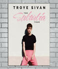 C-600 Troye Sivan Suburbia Tour Pop Music Cover 24x36 27x40Inch Hot Silk Poster