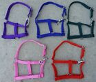 Showman Small Pony Nylon Turnout Stable Halter with Thoat Snap