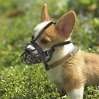 Puppy High Quality Stop Chewing Muzzle Safety Adjustable Pet Dog Mouth Mask RG57