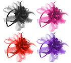 Net Elegant Fascinator Headband Alice band Wedding Ladies Day Race Royal Ascot