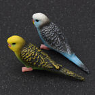 Fake Lifelike Artificial Parrot Bird Perched Figure Home Office Decoration Gift