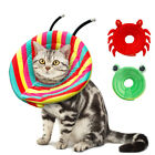 High Quality Cat E-Collar Cone Pet Medical Wound Heal Free Shipping Pet Supplier