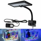 Flexible Aquarium LED Light White&Blue Multi-Color Arm Clip Fish Tank Lighting