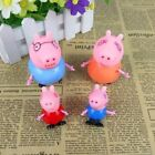 Pig Teacher Dog Rabbit Mini Figures Cute Family Friends Playset Bonus Bag New