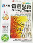 GUTONG TIEGAO Tianhe Pain Relieving Patches From Solstice - 10 Patches