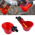 5/10pcs Poultry Water Drinking Cup Chicken Pigeon Bird Automatic Drinking Device