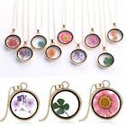 Women Natural Dried Flower Glass Locket Pendant Necklace Sweater Chain Jewellery