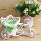 D255 7510 Tricycle Bike Pentagram Basket Container Vases Flower Plant Decoration
