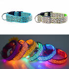 Poly LED DOG COLLAR Personalized Safety Reflective Collars for Dogs S M L XL US